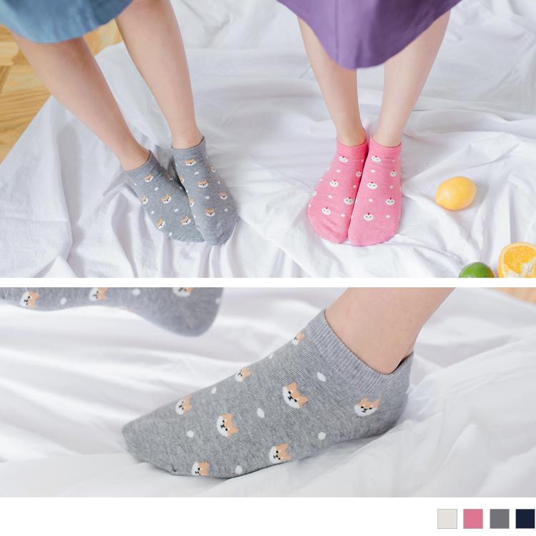 可爱动物大集合短袜