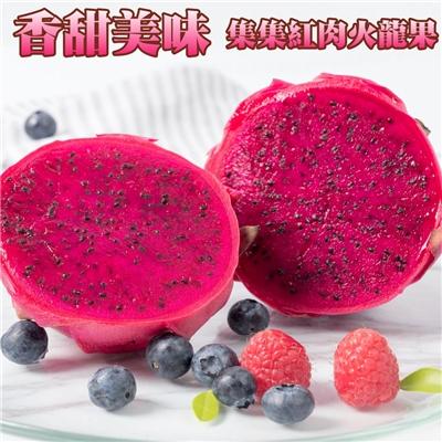 坤田水果 集集紅肉火龍果(3箱)單箱10-15顆10斤